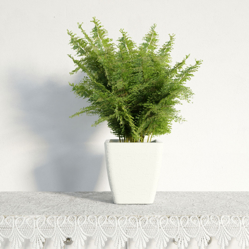 plant 47 AM141 Archmodels