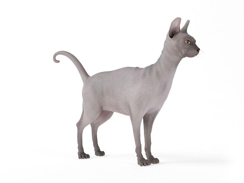 cat 60 AM83 Archmodels
