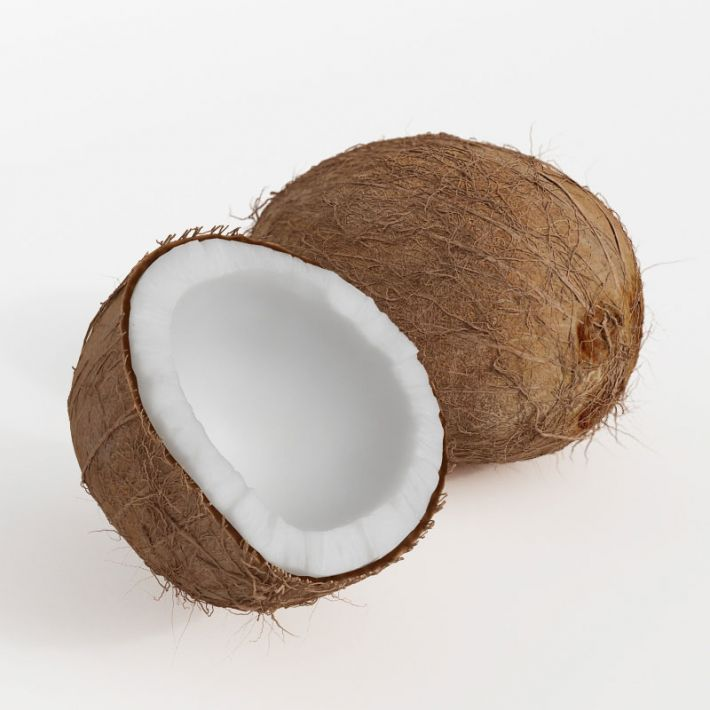 coconuts 11 AM130 Archmodels