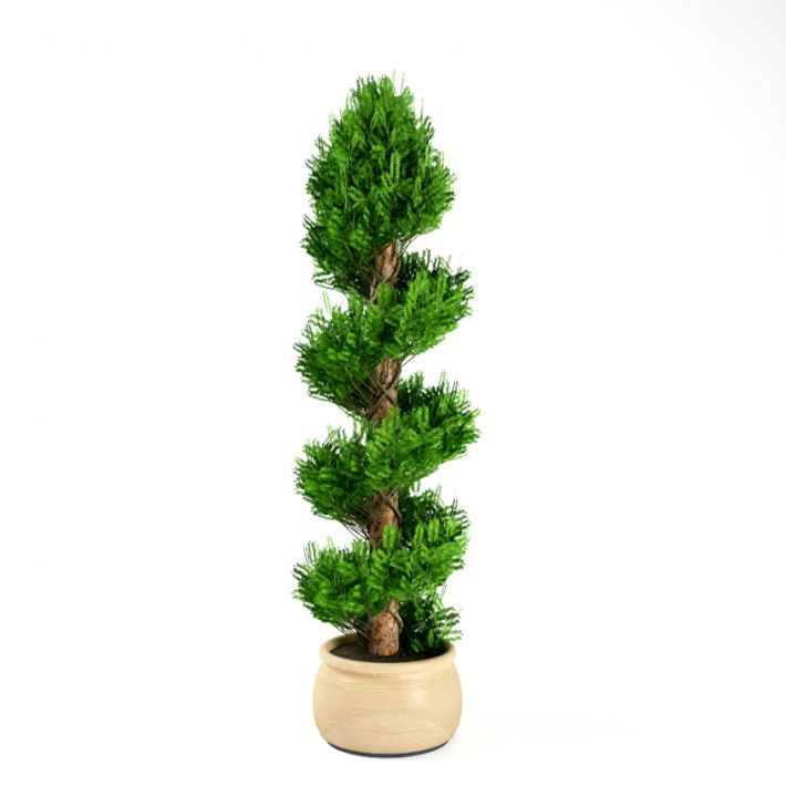 Plant 9 AM75 Archmodels