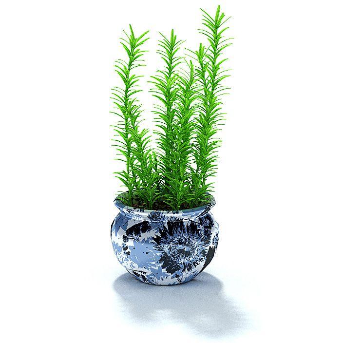 Plant 57 AM31 Archmodels