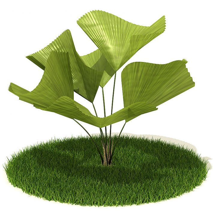 Plant 34 AM42 Archmodels