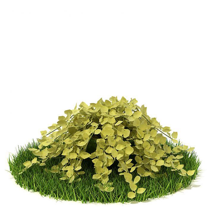 Plant 61 AM42 Archmodels