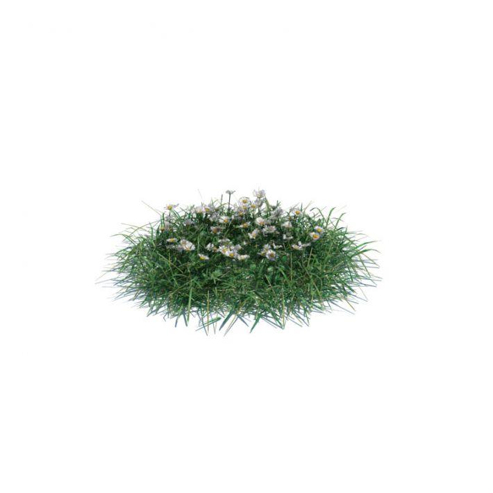 simple grass medium 5 AM126 Archmodels