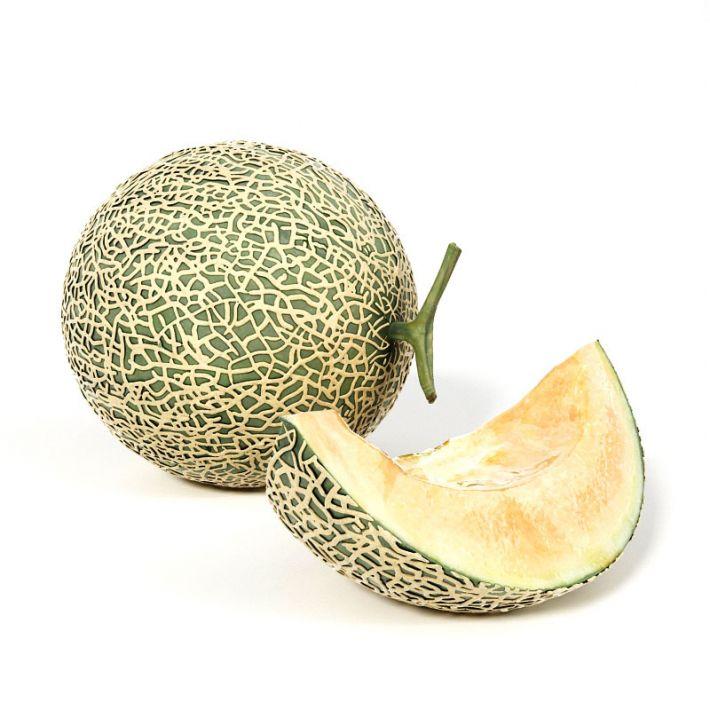 melon 2 AM130 Archmodels