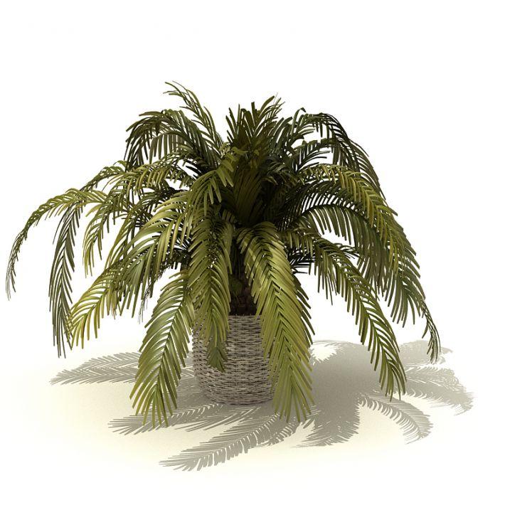 plant 3 AM41 Archmodels