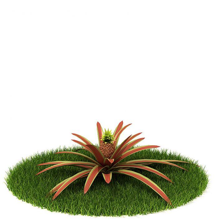 Plant 56 AM42 Archmodels