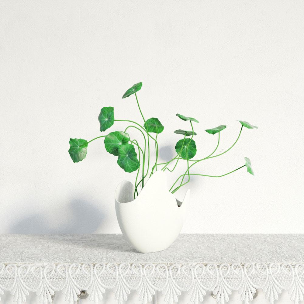 plant 19 AM141 Archmodels