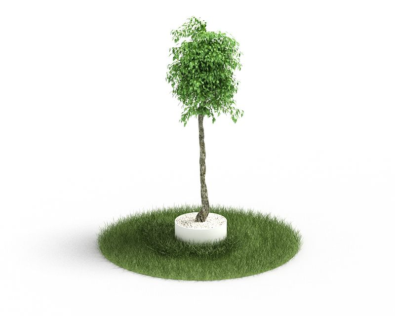 Plant 49 AM4 for Cinema4D Archmodels
