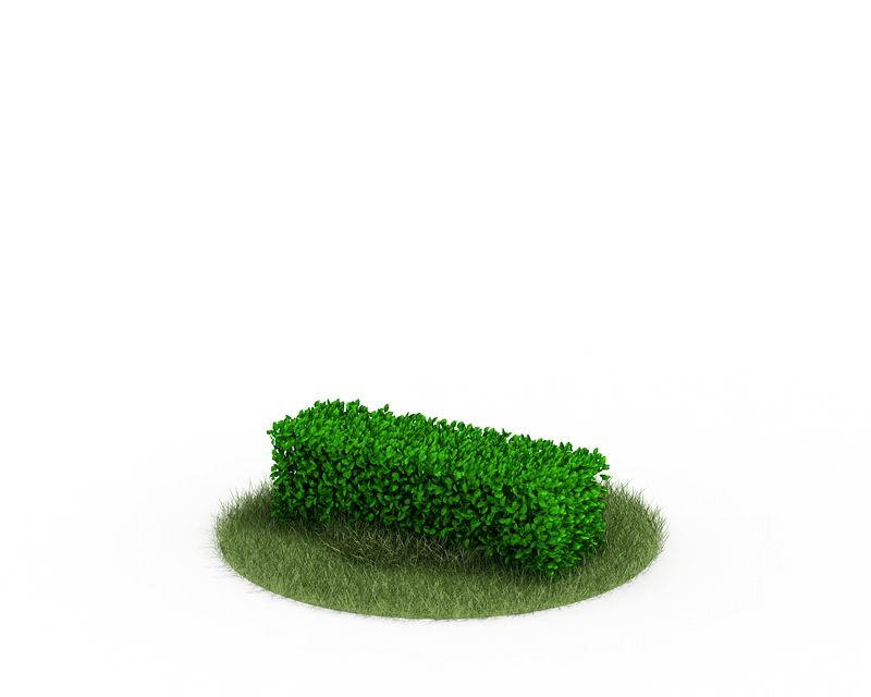 Plant 37 AM4 for Cinema4D Archmodels