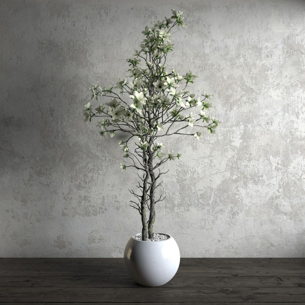 plant 21 AM173 Archmodels