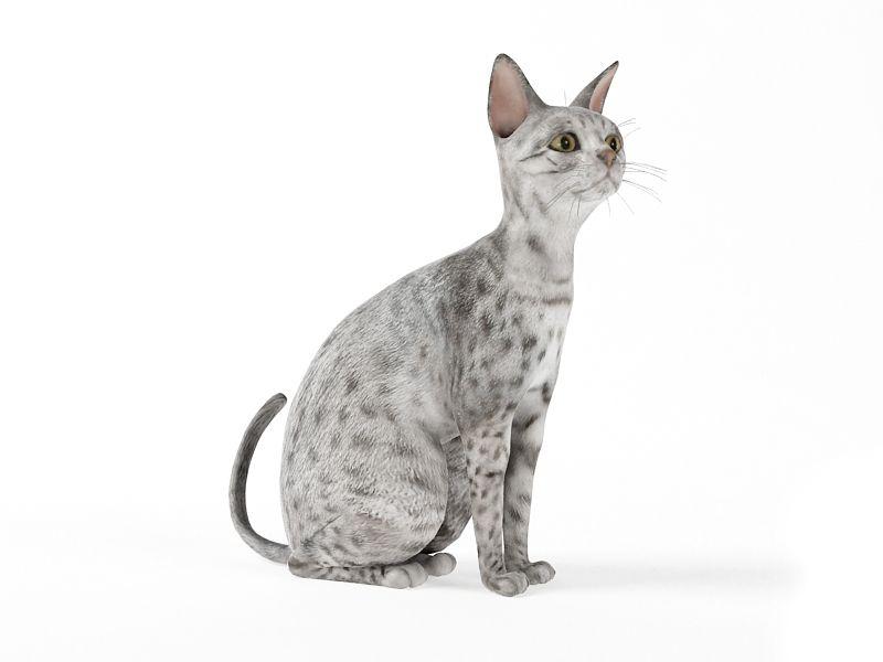 cat 59 AM83 Archmodels