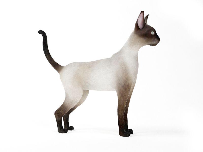 cat 53 AM83 Archmodels