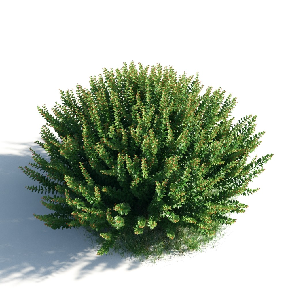 plant 46 AM183 Archmodels