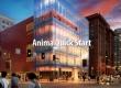 ANIMA 2 | Quick Start Guide