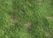 Grass Generator 1.5 released