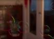 Create soap bubbles in Cinema 4D R18