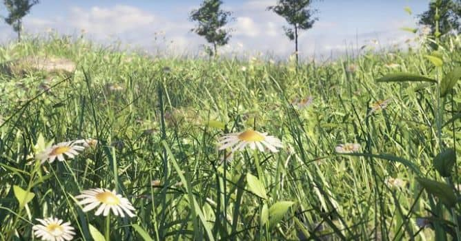 Create Realistic Grass in Blender 2 8 in 15 minutes - Evermotion