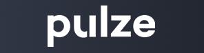 pulze_logo_296.jpg