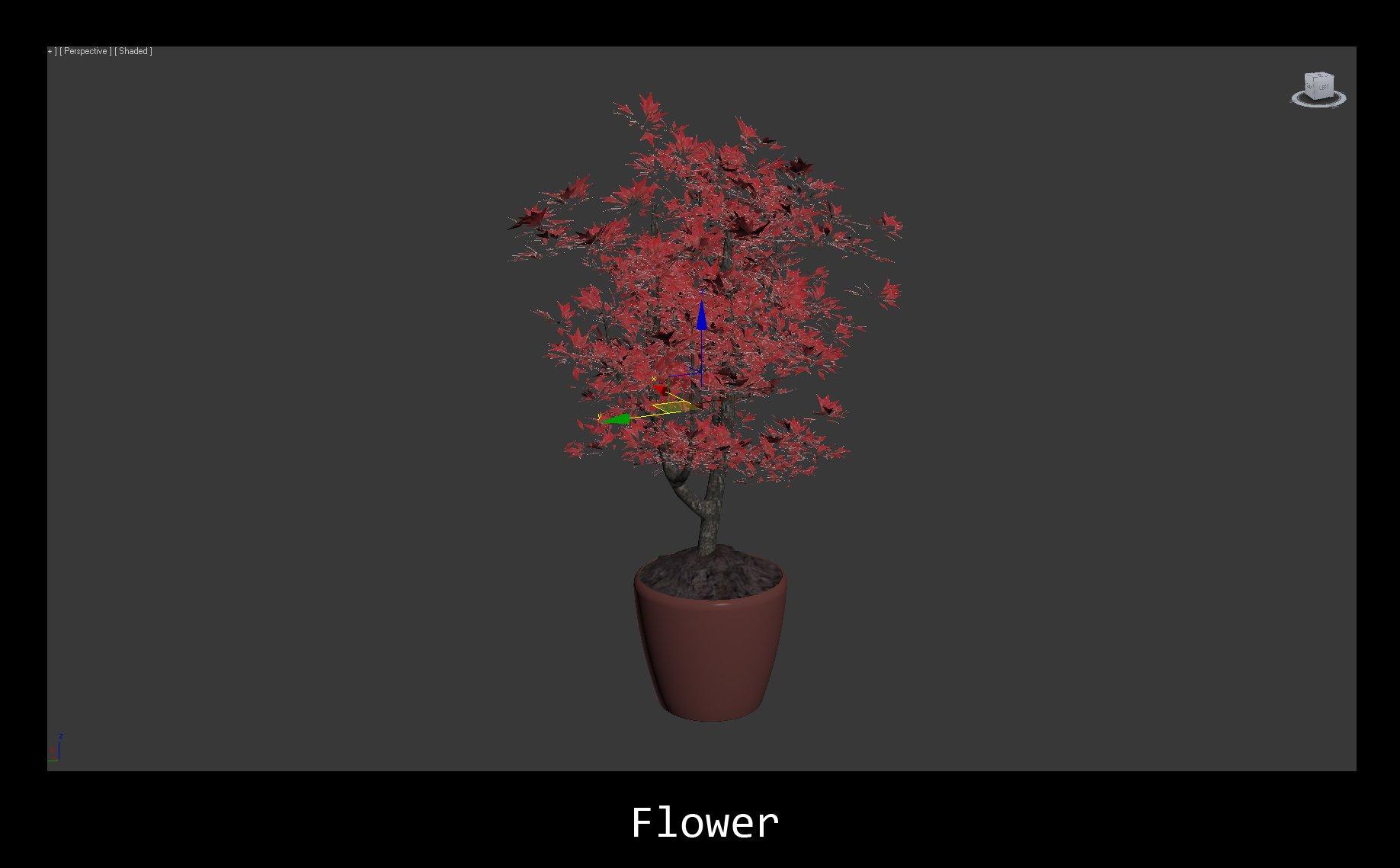 11_flower_evermotion.jpg