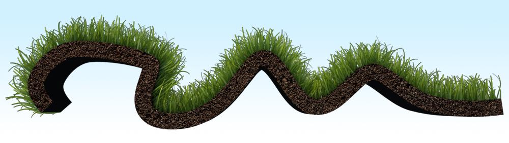 Grass_grow_002_ed.png