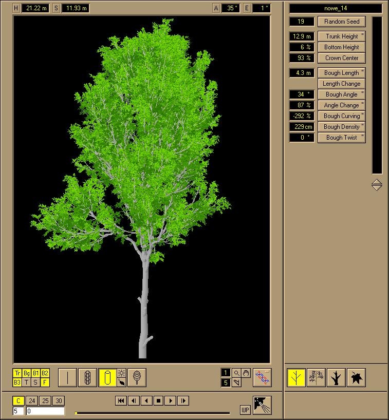 Onyx_tree.jpg