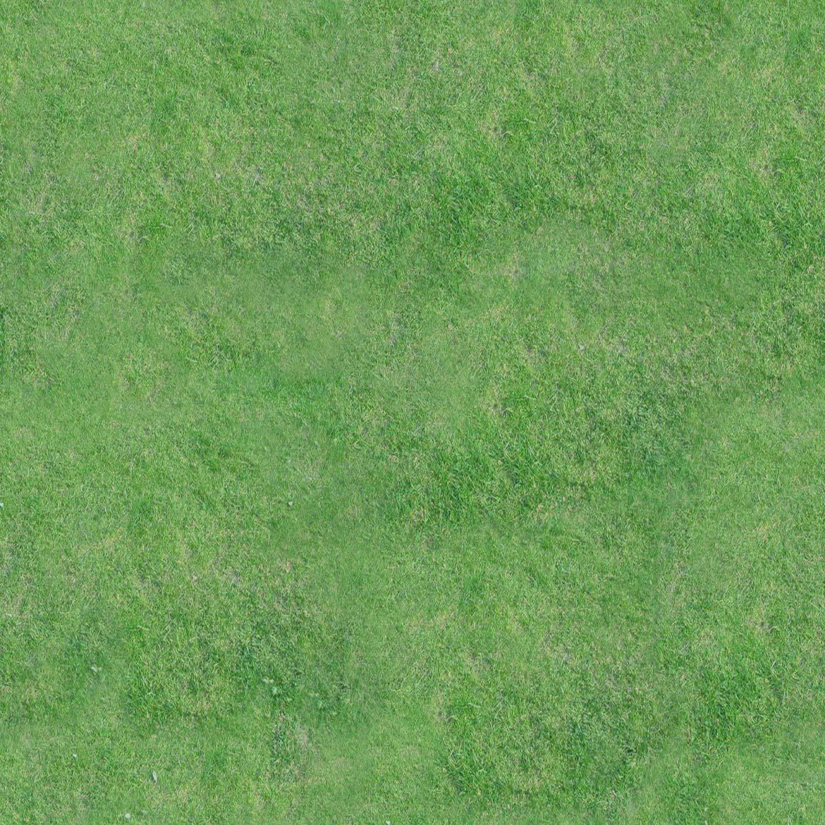 Gras Stock